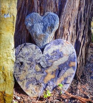 Two heart shaped stones stacked on top of one another, leaning against a large tree.