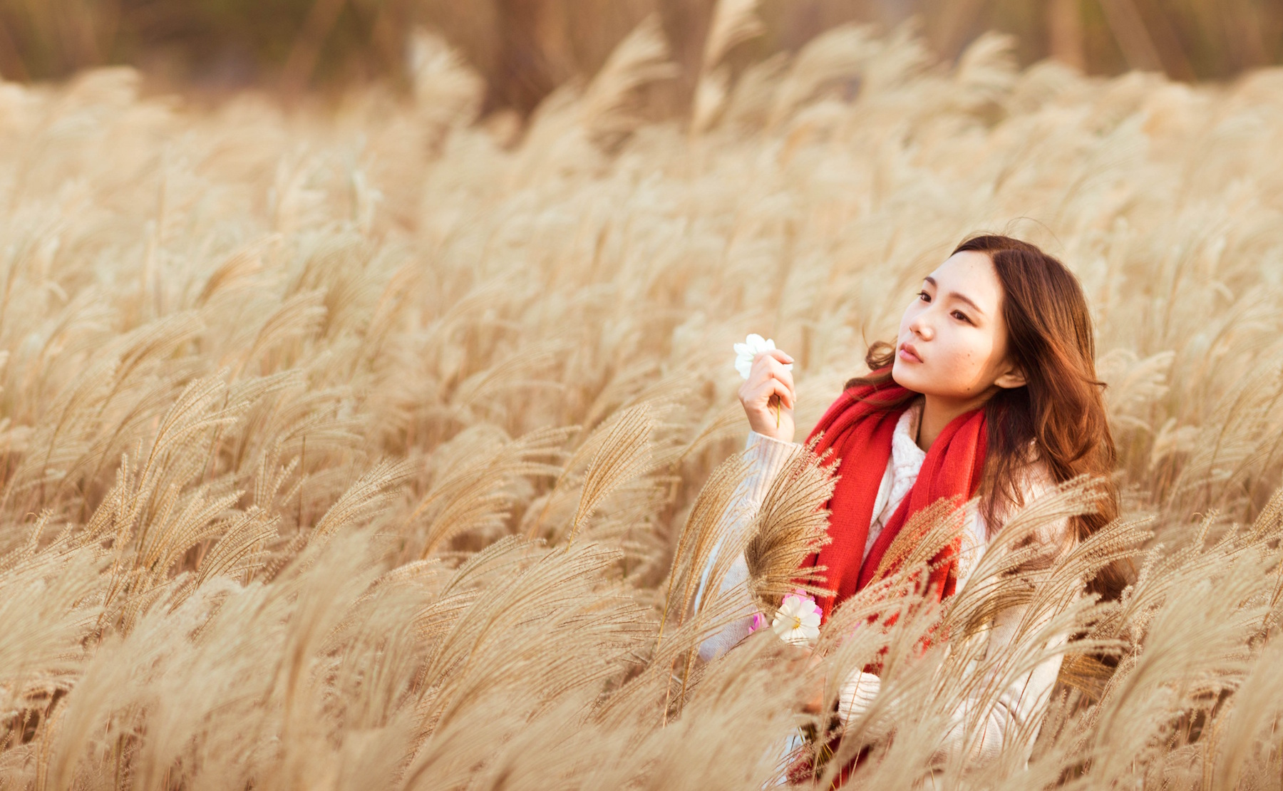 Woman alone deep in thought in a field of wheat, wearing a bright red scarf.
