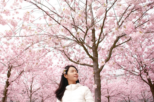 Woman happily standing in front of blooming cherry blossoms.