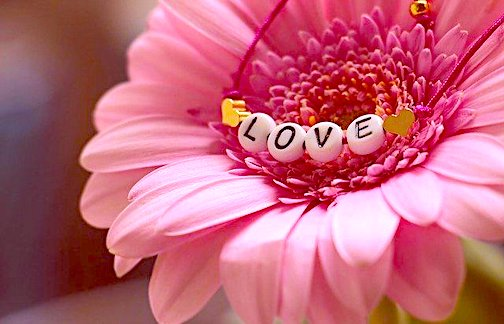 love, sharing love, love asks for nothing