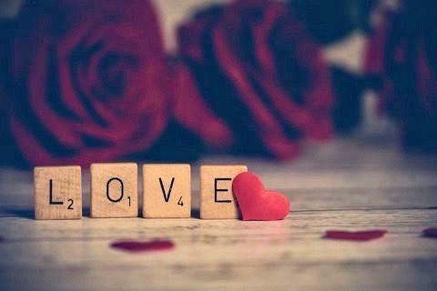 Scrabble letters that spell LOVE with roses in the background.