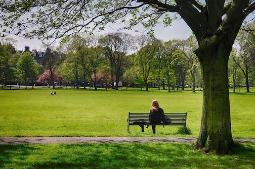 Woman sitting alone on a park bench, overlooking the large lawn.