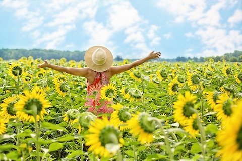 Woman in the middle of a sunflower field, wearing a straw hat and holding out stretched arms toward a partly cloudy and sunny sky.