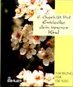 Gift book from Healing Your Aloneness - German,